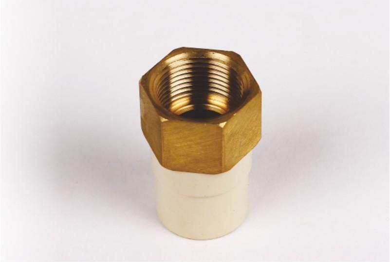 Reducing Brass Female Threaded Adaptor( FTA) – Hex