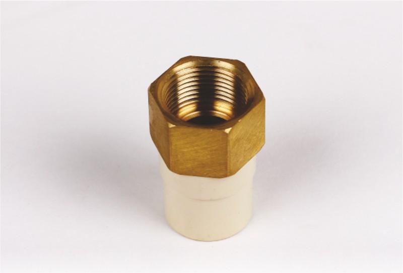 Brass Female Threaded Adaptor (B-FTA)
